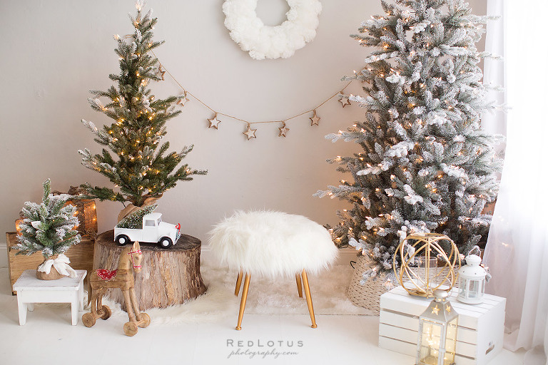 christmas backdrop holiday mini session photos neautral ivory white cream refined classy