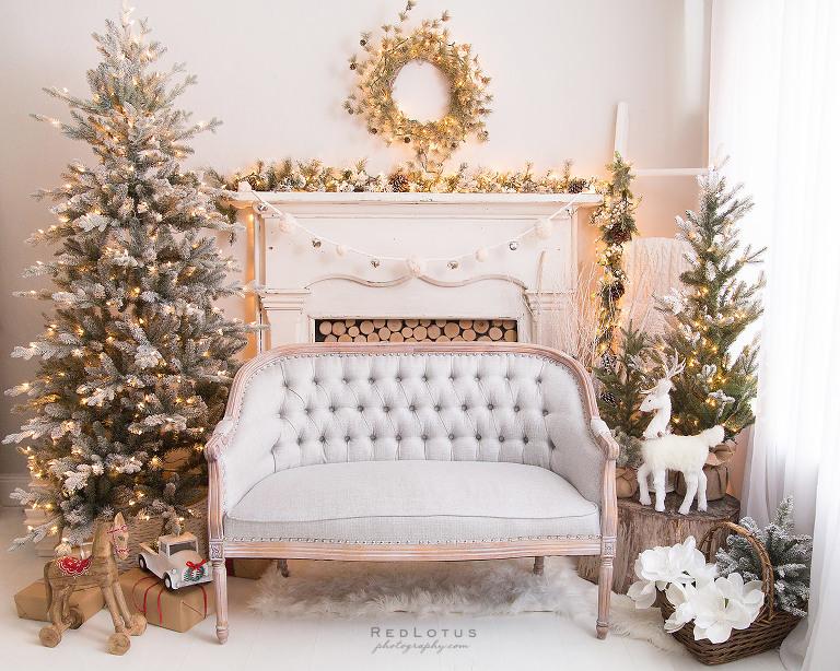 Christmas photos holiday mini sessions photography studio Pittsburgh neutral backdrop elegant classy